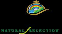 Логотип Schesir