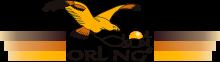 Логотип Orling