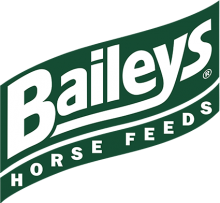 Логотип Baileys