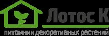 Логотип Лотос К