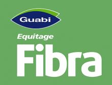 Логотип Fibra