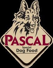 Логотип Pascal