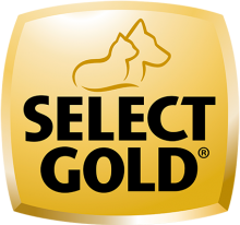 Логотип Select Gold