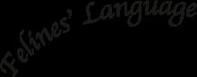 Логотип Felines Language