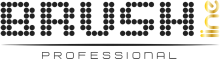 Логотип Brush Line Professional