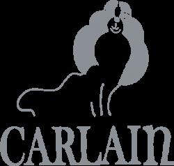 Логотип Carlain