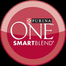 Логотип One Smart Blend