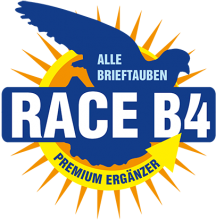 Логотип Race B4