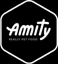 Логотип Amity