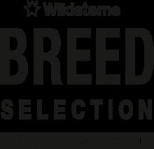 Логотип Wildsterne Breed Selection