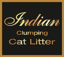 Логотип Indian