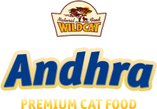 Логотип Andhra