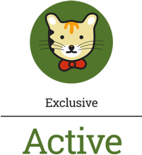 Логотип Active Exclusive