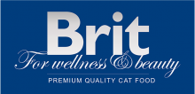 Логотип Brit For Wellness & Beauty