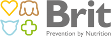 Логотип Brit