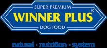 Логотип Winner Plus