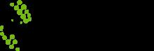 Логотип НовиСтем