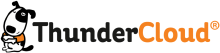 Логотип Thunder Cloud