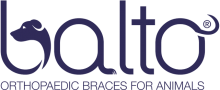 Логотип Balto