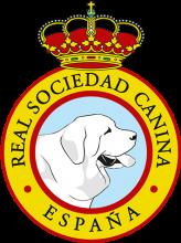 Логотип RSCE