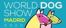 Логотип WDS 2020
