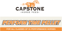 Логотип Capstone Perform Time Pellet