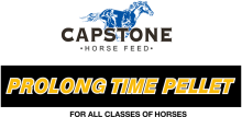 Логотип Capstone Prolong Time Pellet