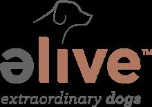 Логотип Elive Dog
