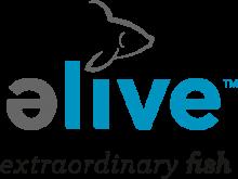 Логотип Elive Fish