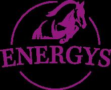 Логотип Energys