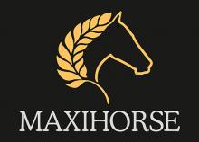 Логотип Максихорс