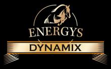 Логотип Energys Dynamix