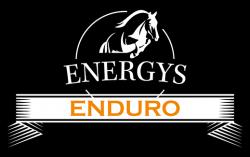 Логотип Energys Enduro