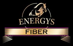 Логотип Energys Fiber