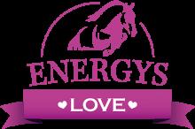 Логотип Energys Love
