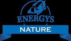 Логотип Energys Nature
