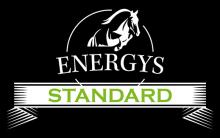 Логотип Energys Standsrd
