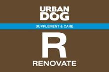 Логотип Urban Dog R