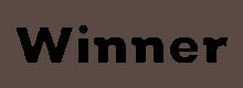 Логотип Winner