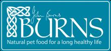 Логотип Burns