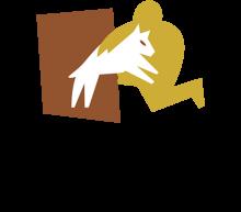 Логотип ANAA