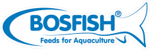 Логотип Bosfish