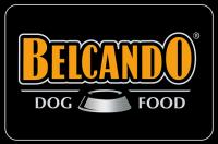 Логотип Belcando