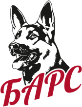 Логотип Барс