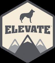 Логотип Elevate