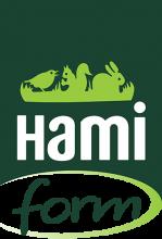 Логотип Hami Form
