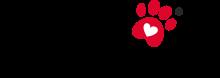 Логотип Camon