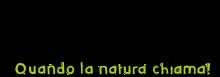 Логотип We Cat