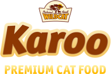 Логотип Karoo