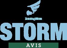 Логотип Storm Avis